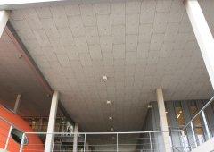 Vysoká škola v Haagu